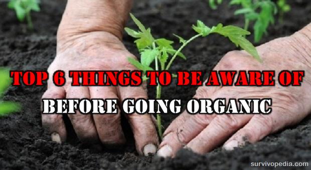 BIG-Organic1