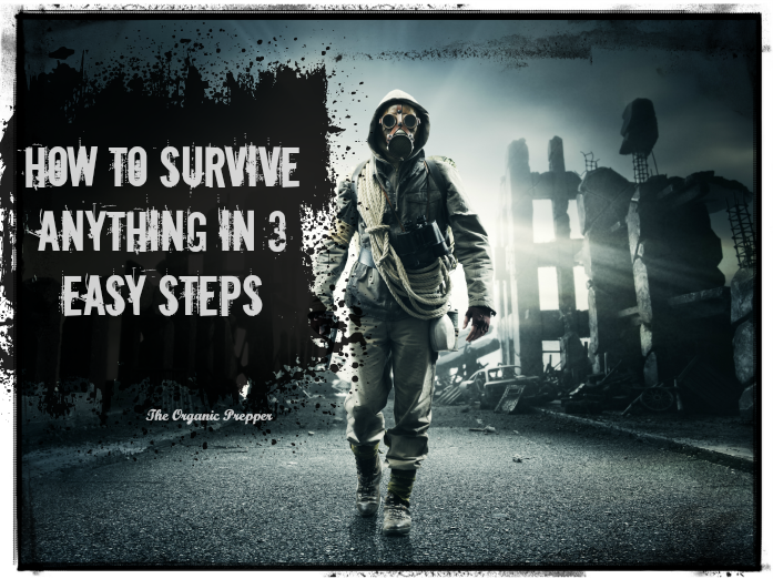 How-to-Survive-Anything-in-3-Easy-Steps