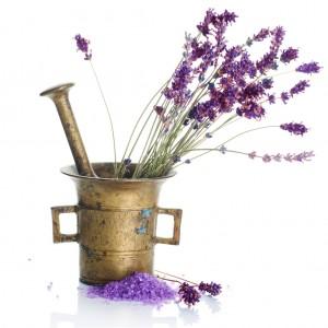 lavender1-300x300
