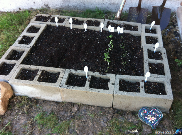 Cinder-Block-Raised-Beds