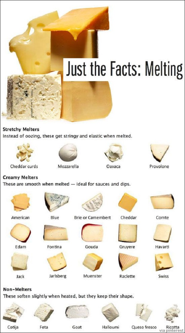 Back To Basics 4 Types Of Homemade Cheese The Prepper Dome
