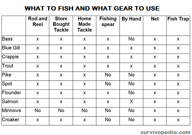 what-to-fish