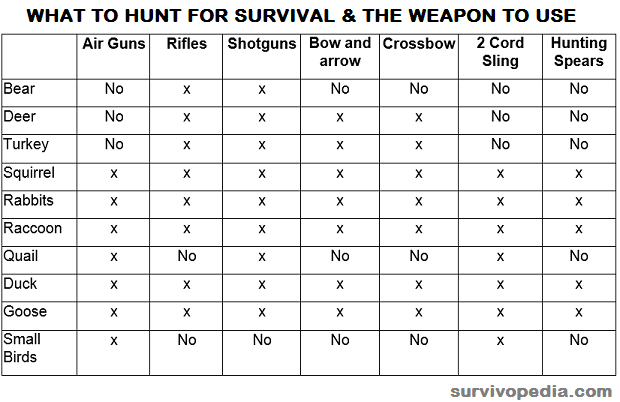 what-to-hunt