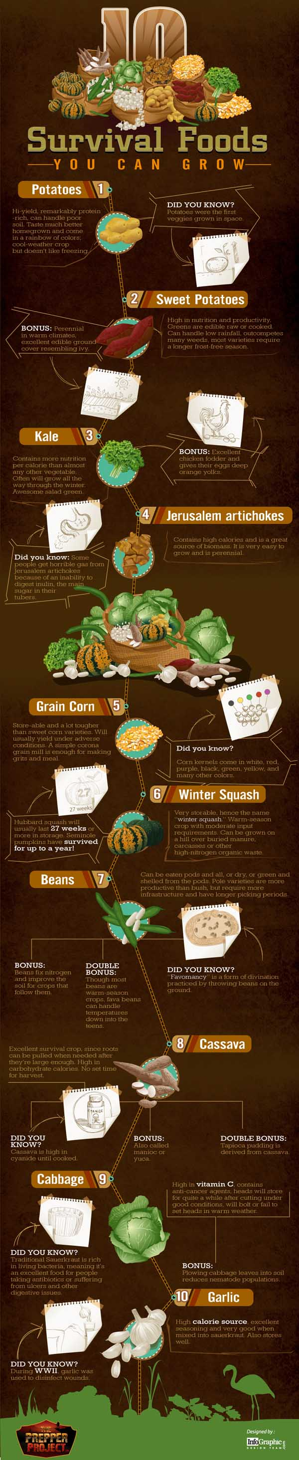 Survival-Foods-Small