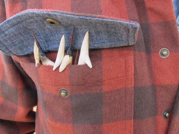 arrows-pocket