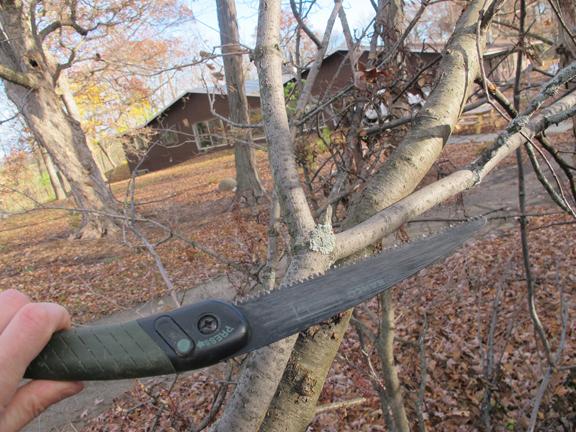 sling-shot-branch