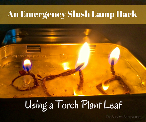 an-emergency-slush-lamp-hack-using-a-torch-plant-leaf-thesurvivalsherpa-com