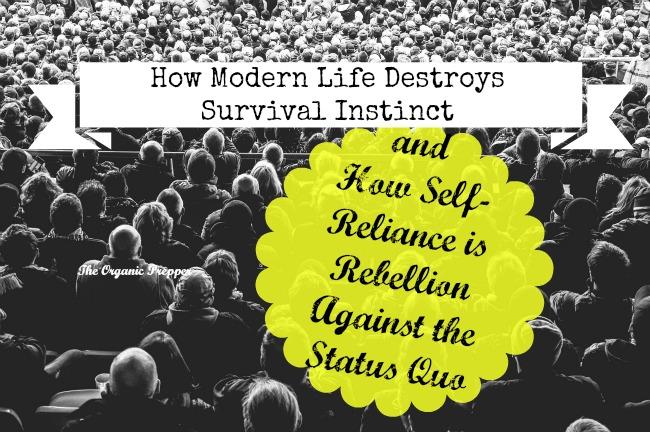 How-Modern-Life-Destroys-Survival-Instinct
