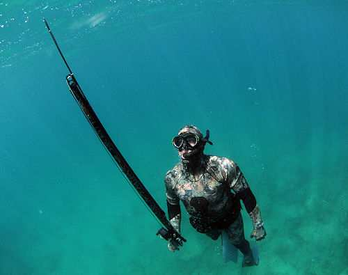 spearfishing-with-a-speargun