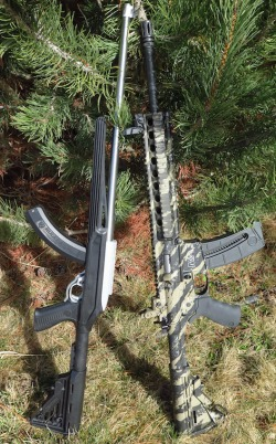 best_survival_rifle_SW-AR22_vs_Ruger_10-22