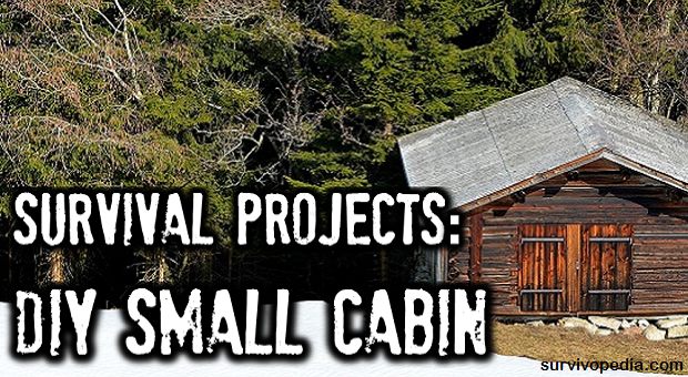 big-diy-cabin