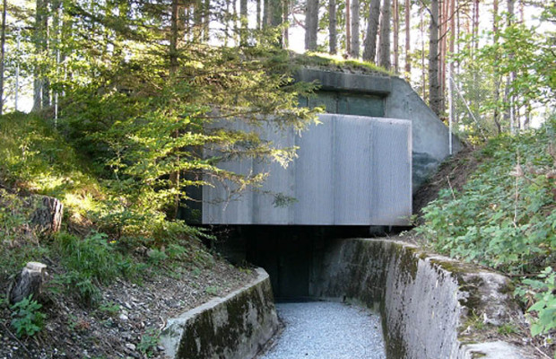 What is the best bunker design the prepper dome for Garden pool doomsday preppers