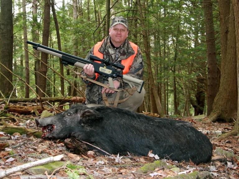 Air Rifle Hog Hunting Airguns Preppers Primer Practicalities
