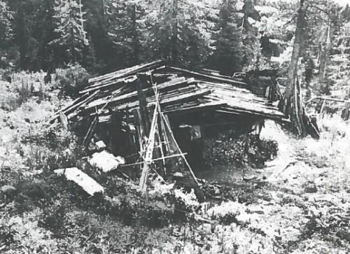 lykovs-home