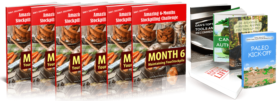 Amazing_6_Months_Stockpiling_Challenge.odt21