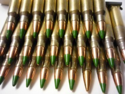best_ammo_for_preppers