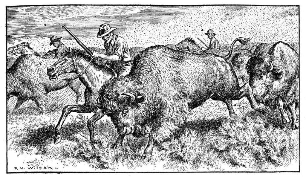 Giving chase to the buffaloes, by F. N. Wilson. From a memoir by Oregon Trail pioneer Ezra Meeker. Image date: ca. 1922.