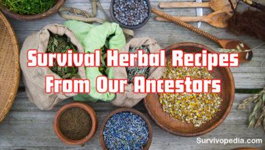 Big-Herbs-Recipes_11