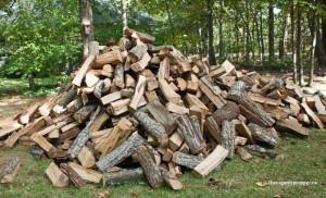 woodpile-300x182