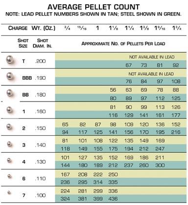 Shotgunning-pellet-count-per-load-shotshell_drundel_com.jpe