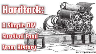 Survivopedia-homemade-hardtack