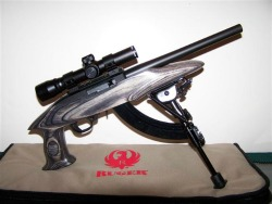 charger_ruger_22_model_4917_review