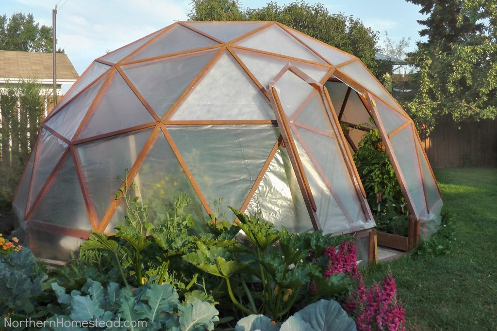 Geo-Dome-1024x683