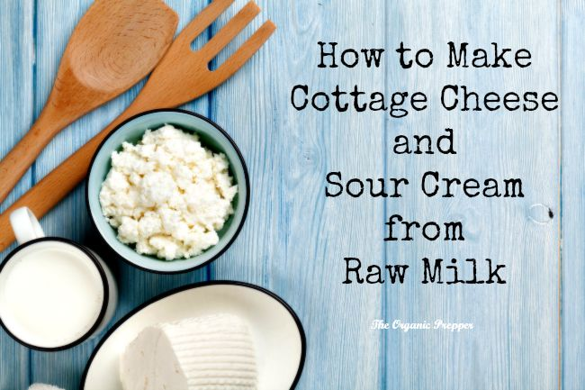 How To Make Cottage Cheese And Sour Cream From Raw Milk The Prepper Dome