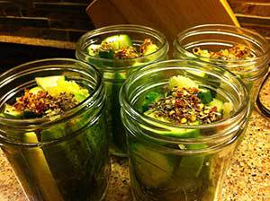 pickingcucumbers