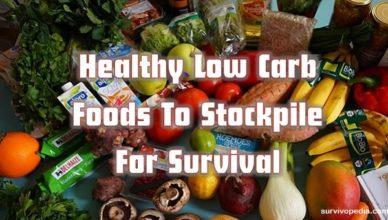 survivopedia-low-carbs
