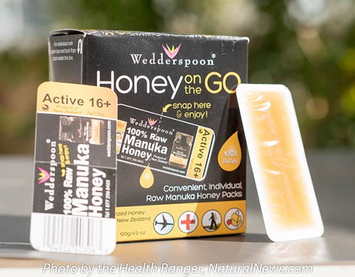 manuka-honey-first-aid-500
