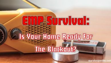 survivopedia-emp-survival-is-your-home-ready-for-the-blackout