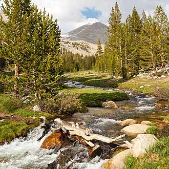 Whitney Creek - Beautiful alpine stream west of Mount Whitney, Sierra Nevada, California, USA