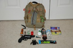 bug_in_bag_shtf_woods