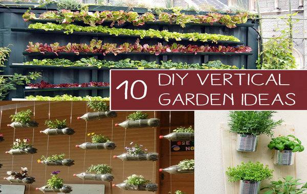 easy diy vertical garden how to build your own diy. Black Bedroom Furniture Sets. Home Design Ideas