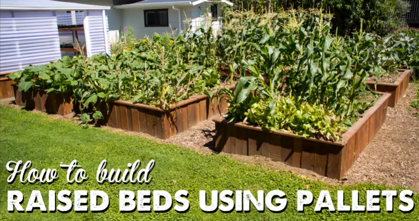 How To Make Raised Garden Beds Out Of Pallets The